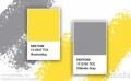 ВЕЧЕ ЗНАЕМ ЦВЕТА НА 2021 ГОДИНА - озаряващо жълто и основно сиво!